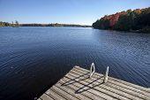Lake In Autumn
