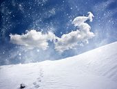 Beautiful winter landscape with footsteps in the snow