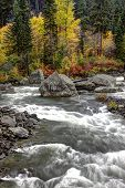 Rapids On Wenatchee River.