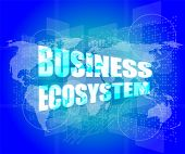 pic of ecosystem  - business ecosystem words on digital touch screen - JPG