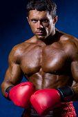 Portrait Of Boxer Posing In Studio In Gloves