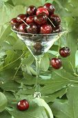 Transparent Martini Glass Piled High With Dark Red Cherries