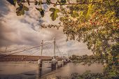 Chelsea Bridge in autumn