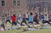 Outdoor Yoga Gathering