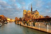 picture of notre dame  - Notre Dame at sunrise  - JPG
