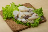 pic of cuttlefish  - Raw cuttlefish with herbs on the wood background - JPG