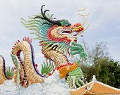 picture of taoism  - Closeup decoration design of Chinese dragon on nature background - JPG