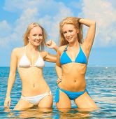 stock photo of denude  - Joy In Bikini on a Beach  - JPG