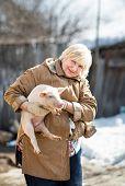 picture of pig-breeding  - Female farmer holding a pig for domestic animal breeding - JPG