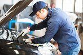 image of steers  - Portrait of an auto mechanic putting oil in a car engine - JPG