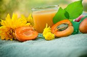 stock photo of apricot  - Glass of apricot juice and apricots on table close up - JPG