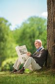 picture of newspaper  - Senior man reading a newspaper in park and leaning against a tree - JPG
