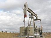 Oil Pump 6