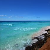 Rocky Coastline Of Barbados