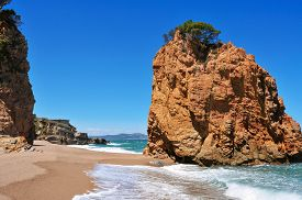 picture of naturist  - a view of the Cala Illa Roja beach in Begur - JPG