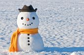 picture of seasons greetings  - cute snowman on snowy field - JPG