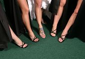 Bridal Party Group Showing Of Their Sexy Legs