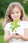 picture of planting trees  - Little girl and young plant of a oak - JPG