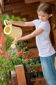 foto of summer fun  - Little gardener watering flowers - JPG