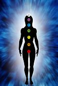 illustration with female silhouette figure and the chakras symbols