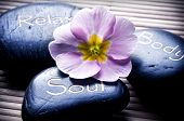 three massage stones - relax, body, soul - and a flower like a concept for wellness, reiki, body car