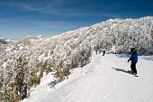 Lake Tahoe Snow Boarder On Road