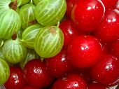Cherries And Gooseberries 1