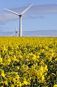 wind and arable farming,  yorkshire, England