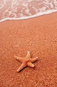 Starfish Lying On Sand And Soft Surf Wave On Background poster