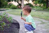 Cute Little Asian 18 Months / 1 Year Old Toddler Baby Boy Child Exploring Environment By Looking Thr poster