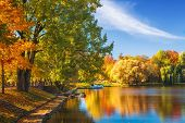Amazing Autumn Landscape On Clear Sunny Day. Colorful Trees Reflected In Water Surface Of Lake In Pa poster