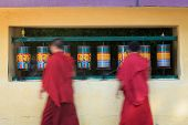 Buddhist monks (llama) passing and rotating prayer wheels on kora around Tsuglagkhang complex in McL