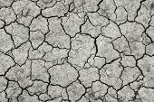 Dried And Cracked Ground.the Texture Of Black Earth.deep Cracks In The Fertile Land Without Rain poster