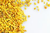 macro pollen