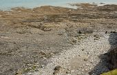 Beach At Westward Ho! In North Devon, England At Low Tide, Showing Rock Table And Large Shingle Boul poster