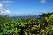 St. John, Us Virgin Islands Panorama
