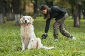 Young Woman Cleaning After Golden Retriever Dog In Park poster