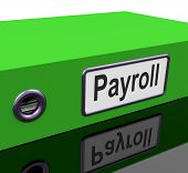 foto of payroll  - Green Payroll File Containing Employee Timesheet Records - JPG