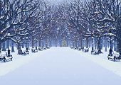 Avenue of trees, street lamps and benches in a snow covered park