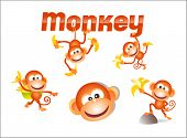 foto of chimp  - original illustrated monkey character with variety of poses - JPG