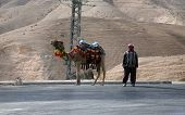 JERICHO , ISRAEL - JANUARY 01: Unidentified Bedouin man wait tourist near his dromedary in Jericho,