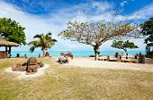Beautiful exotic coast at Moorea in French Polynesia