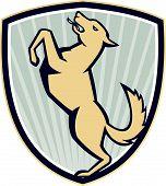 Prancing Dog Side Shield