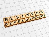 business development in golden cubes