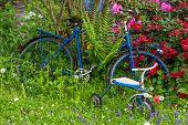 Old Bike Between Flowers In A Garden With Three Wheeler