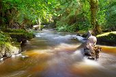 Beautiful creek of Clare Glens, Co. Limerick, Ireland