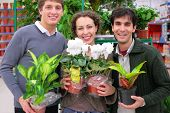 pic of potted plants  - Three friends in shop holds pots with plants in shop focus on woman - JPG