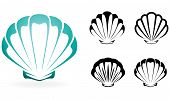 Shell collectie - silhouet vectorillustratie
