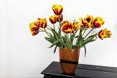 Tulips On Piano