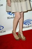 ANAHEIM, CA - MARCH 31: Willa Holland  arrives at the 2013 Wondercon convention press room at the Anaheim Convention Center on March 31, 2013 in Anaheim, CA.
